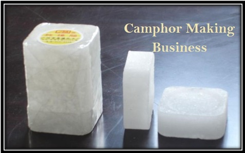 Camphor Making Business Plan Investment Profit
