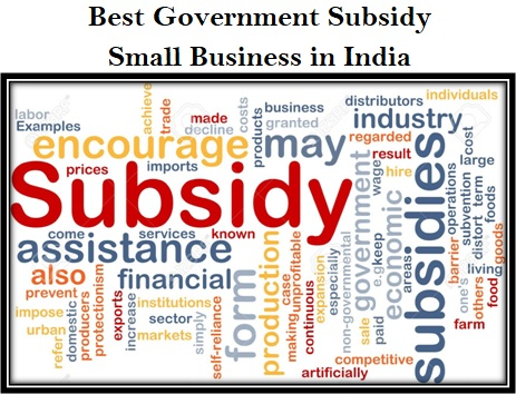 Best Government Subsidy For Small Business in India - Startup Business Idea