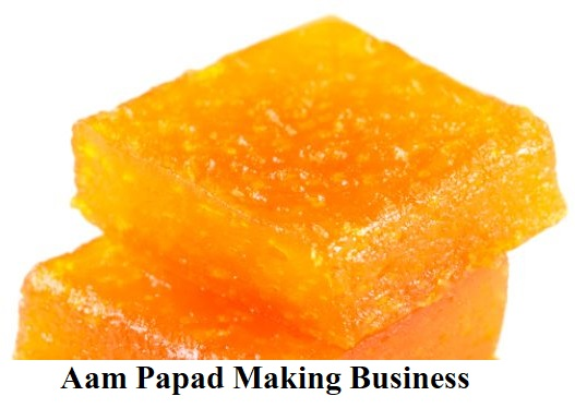 Aam Papad Making Business