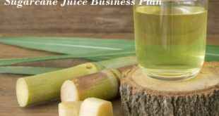 Sugarcane Juice Business Plan